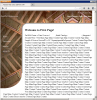 Site History - SunWebCenter